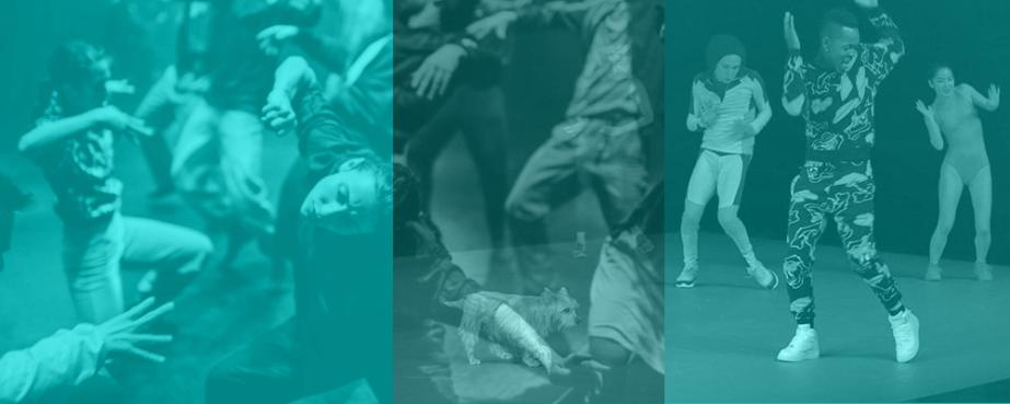 Incontro alla danza_In festival – Percorsi divisione